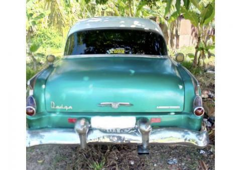 Dodge 1954