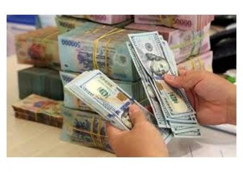 La ayuda y la asistencia financiera